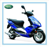 50cc/125c/150cc Gas Scooter with EEC Scooter (Swift)