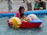 Amusement Paddle Boat Single/Double Player Boat
