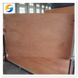 6mm 9mm Birch / Oak / Pine / Keruing / Maple Veneer Commercial Plywood