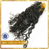 8A Grade Wholesale Virign Peruvian Human Hair Extension Italy Wave