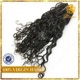 8A Grade Wholesale Virign Peruvian Human Hair Extension Italy Wave