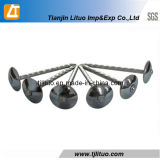 Electro Galvanized Twisted Shank Umbrella Head Roofingn Nails