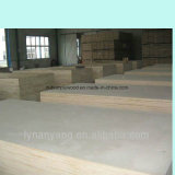 Lumber/Timber/Woods/ Poplar Plywood From Linyi City