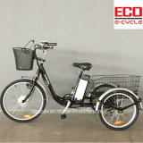 Lithium Battery and Passenger and Cargo Et 232 Electric Tricycle