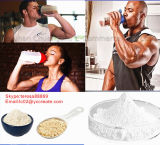 Protein Powder Nutrition Human Transferrin Natural Whey Protein Powder
