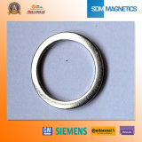 Wholesale Rare Earth Ring Permanent Magnet