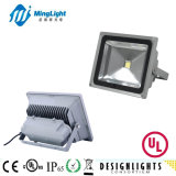 10W, 20W, 30W, 40W, 50W Floodlight LED, Floodlighting with PIR Sensor, UL Floodlight, Garden Lamp, Meanwell Driver Exterior Fixture, Brigelux LED Lighting