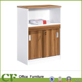 2016 New Design of Cabinet File Cabinet File Storage (CF-S81603)