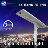 Bluesmart 100W IP65 Solar LED Street Lightings with Remote Control