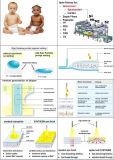 Spunbond Meltblown Spunbond Nonwoven Fabric Plant