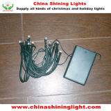Green Wire Ce Euro Standard 2m 20LED Fairy Lights