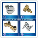 Customized Screw, Round Head Knurled Screw / Slotted Round Head Screw (DKL-S001)