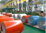 Color Cotated Galvanized Steel Palte Sheet