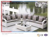 Modern Outdoor Patio Fabric Sofa Set (TG-042)