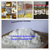 Factory Supply Steroid Powder Testosterone Acetate for Bodybuilding Fitness