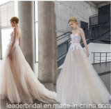 Champagne Bridal Gowns Sleeveless Lace Tulle Wedding Dresses Y2044
