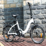 36V 250W Foldable Electric Bicycle with LCD Display (RSEB-107)