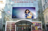 Outdoor Ultra HD P5 Full Color LED Panel for Advertising