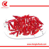 Chaotian Chili Pods Dried High Quality
