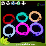 Colorful Neon Flexible LED Hose Light with 110V