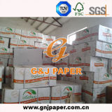 18GSM White Greaseproof Wrap Paper for Food Packing