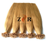 Chinese Remy Hair Double Drawn Cuticle Quality Preboned Keratin Hair Extensions