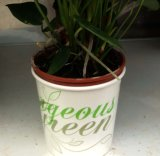 Hot Sale Greenery Paper Bowl, 130mm Top. 115mm