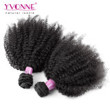 Afro Kinky Virgin Hair / 100% Brazilian Hair Extension