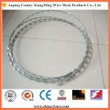 Galvanized Metal Razor Barbed Wire Hot Sale