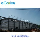 Customized High Productivity Cold Storage and Refrigerate Equipment for Freeze Drying Food Production and Processing