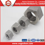 High Strength ASTM A194 B8 Stainless Steel Hex Head Nut