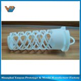 Customized 3D Printing Rapid Prototype