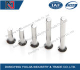 GB869 Stainless Steel Countersunk Head Rivets