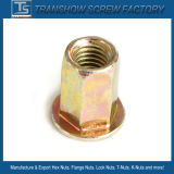 Color Zinc Galvanized M8*22 Hex Body Rivet Nut