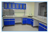 Microbiology Laboratory Wall Mounted Bench with Shelf Support Wall Cabinet