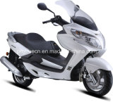 New Design Fashion Popular Scooter (SP125QT-19)