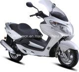 New Design Fashion Popular Scooter (SP125QT-19)