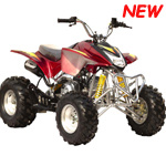 125cc Quad ATV Bike for Use