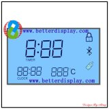 Supply Customized Monochrome LCD Panel LCD Display Module