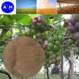 Cobalt Amino Acid Chelated for Fertilizer