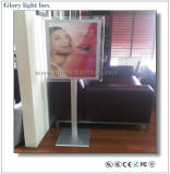High Quality LED Crystal Light Box with Standing
