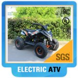 500 W Cheap ATV Electric with High Quality
