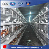 Jinfeng Design Large-Scale Farm Used Poultry Battery Chicken Cage