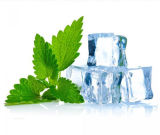 Ice Mint Lemon Flavor Eliquid Healthy Original E-Cigarette E Liquid with Various Flavour with OEM Service