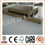 Film Faced Plywood Multi-Purpose Building Tile Template