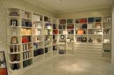 Modern Design Bedroom Furniture Book Cabinet (Br-B005)