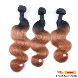 Double Weft Hair Muti Color Virgin Brazilian Hair