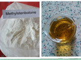 Anti Estrogen Steroids Methyl Stenbolone