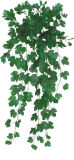 High Simulation Plant Maple IVY Leaves