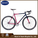 700c Fixie Fixed Gear Road Cyclocross Bike /Viper (CX1)
